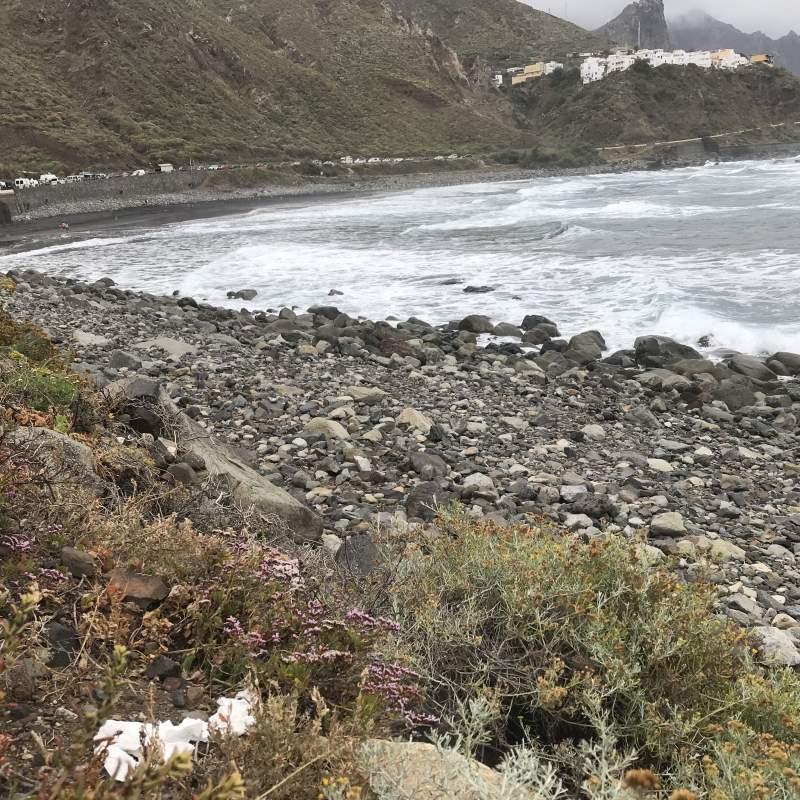 playa almaciga en Tenerife
